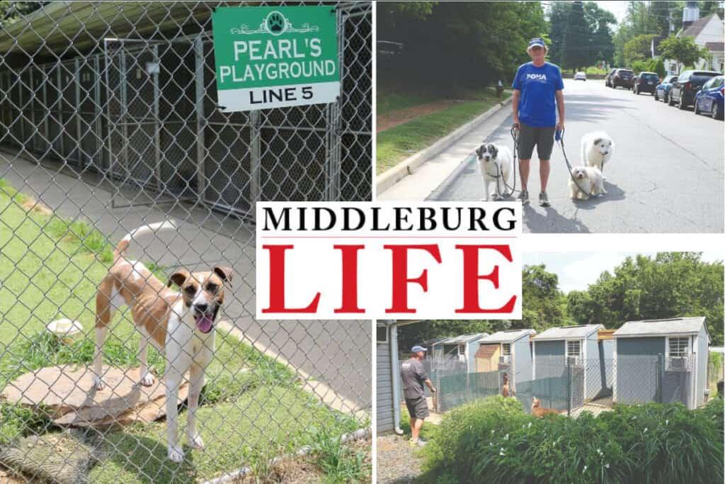 MiddleburgLifeNews