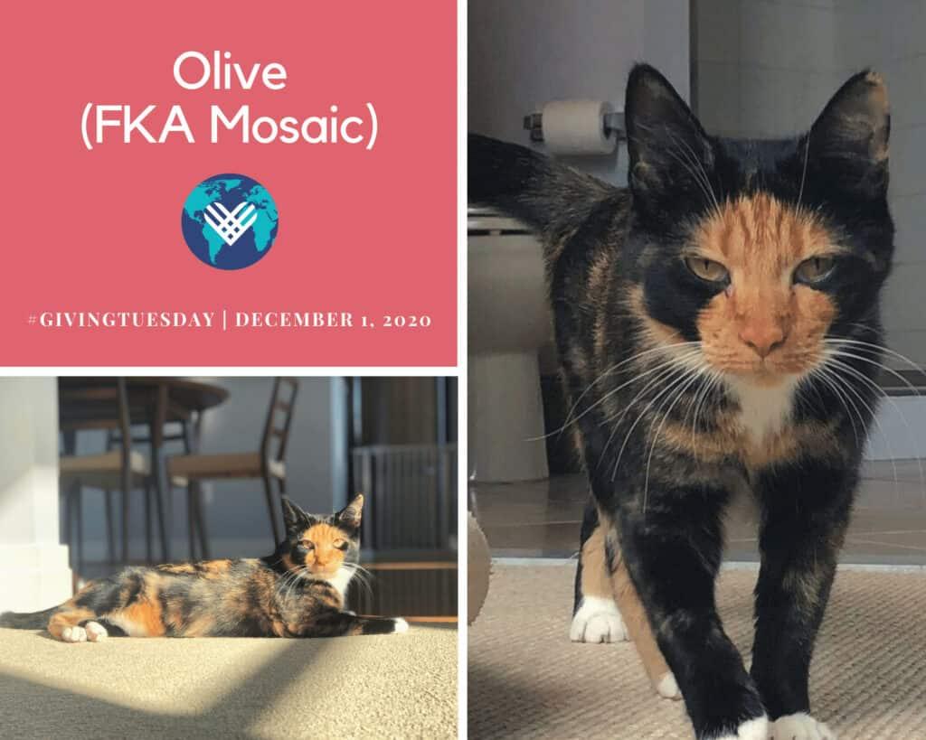Olive (Mosaic)