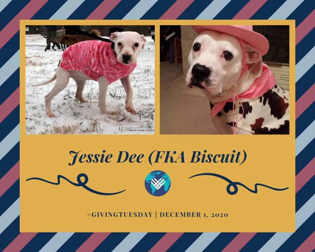 Jessie Dee (FKA Biscuit)